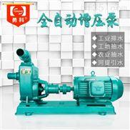 FSR-80自吸清水泵 高揚程、小型自吸泵家用