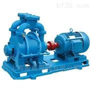 水環式真空泵及壓縮機
