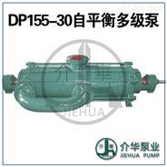 介华泵业DP155-30*6耐磨自平衡泵