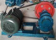 华潮高粘度齿轮泵CB-7 稠油泵货全泊头厂家红旗