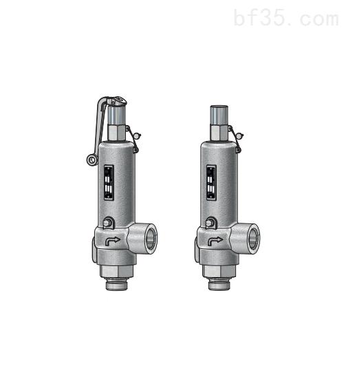 泄压阀Niezgodka safety valve 4型