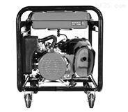 上海丹鹿300A汽油发电电焊机图片