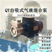 电动污水提升泵臭氧发生消毒过滤泵自吸泵